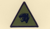 19 Mechanised Brigade (Subdued)