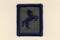 21 Engineer Regiment 
