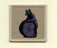 10 Signals Regiment (Desert)
