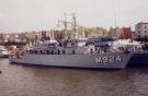 M924 Primula