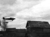 Junkers Ju 52 (3)