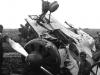 Polikarpov I-16 Fighter (1)
