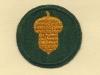 US 87 Infantry Division (Acorn)