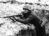 Eastern Front Collection 326