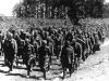 Eastern Front Collection 463