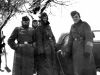 Eastern Front Collection 769