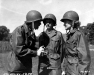 Normandy 1944 Collection 424