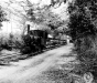 Normandy 1944 Collection 429