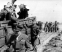 Normandy 1944 Collection 477