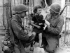 Normandy 1944 Collection 493