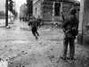 Normandy 1944 Collection 502
