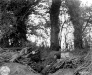 Normandy 1944 Collection 622