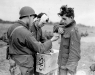 Normandy 1944 Collection 730