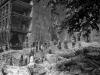 Berlin May/June 1945 103