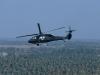 Blackhawk UH-60 Utility Helicopter 2