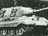 Jagd Tiger (2)