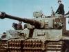 Tiger I (7)