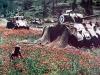 M4 Sherman Bivouac Area
