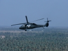 Blackhawk UH-60 Utility Helicopter 2