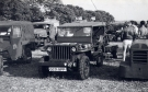 Willys MB/Ford GPW Jeep (Q 251 NPP)