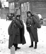 Eastern Front Collection 29
