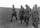 Eastern Front Collection 36