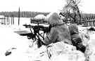 Eastern Front Collection 223