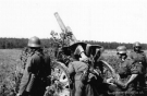 Eastern Front Collection 231