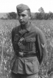 Eastern Front Collection 261