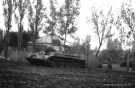 Eastern Front Collection 347