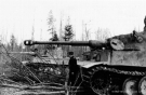 Eastern Front Collection 357