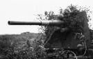 Eastern Front Collection 490