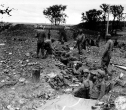 Normandy 1944 Collection 87