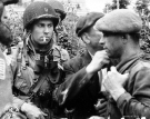 Normandy 1944 Collection 130