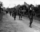 Normandy 1944 Collection 142