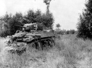 Normandy 1944 Collection 155