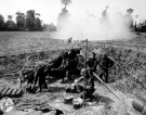 Normandy 1944 Collection 219