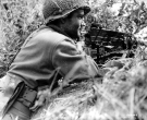 Normandy 1944 Collection 229
