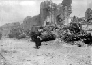Normandy 1944 Collection 227