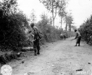 Normandy 1944 Collection 294