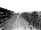 Normandy 1944 Collection 437