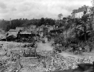 Normandy 1944 Collection 447