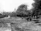 Normandy 1944 Collection 486