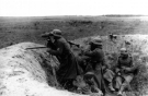 Eastern Front Collection 681