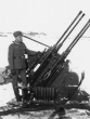 Eastern Front Collection 733