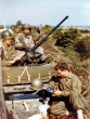 Normandy 1944 Collection 646