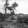 Normandy 1944 Collection 652