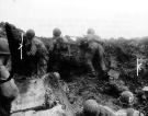 Normandy 1944 Collection 669