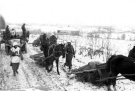 Eastern Front Collection 1088