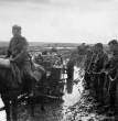 Eastern Front Collection 1170